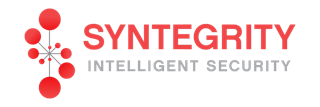 syntegrity
