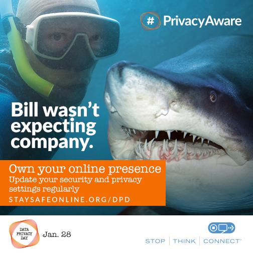 Own you ronline presence shark